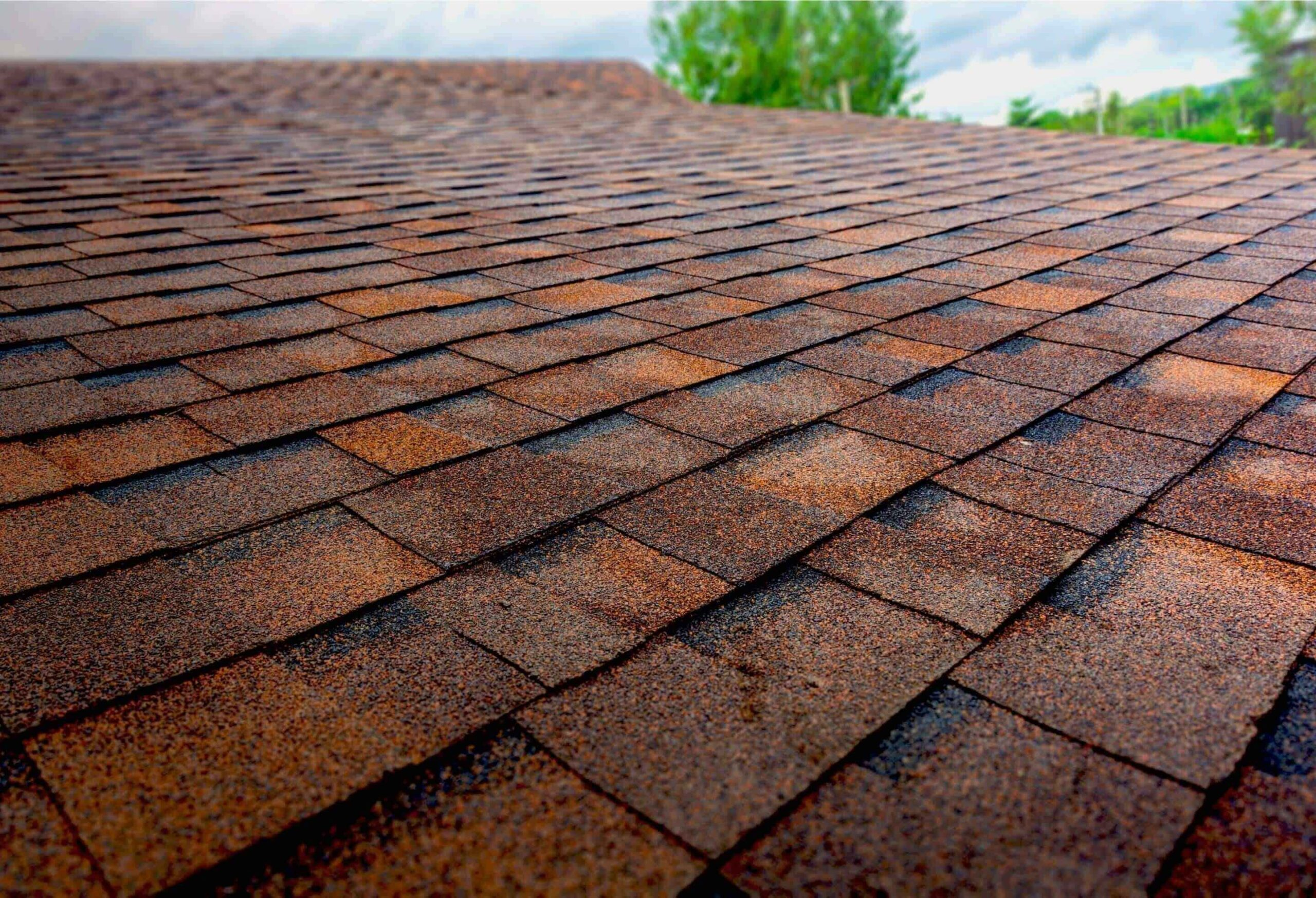 All About Manufactured Home Roof Replacement